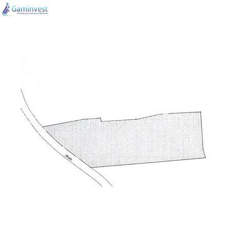GAMINVEST - Teren intravilan de vanzare la Coada Lacului, Bihor V1629