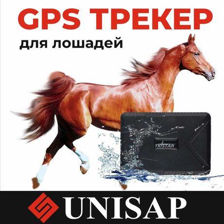 GPS/ТРЕКЕР/Отслеживание Лошадей/100дней заряд батареи/ДОСТАВКА АКТАУ!