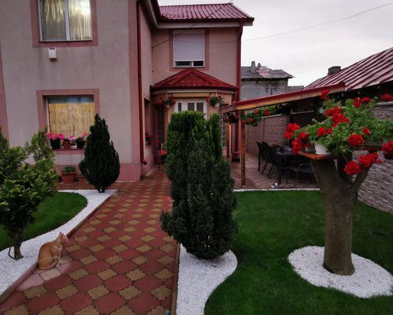 Casa P+1, zona Bratianu