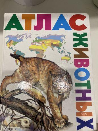 Энциклопедия Атлас животных