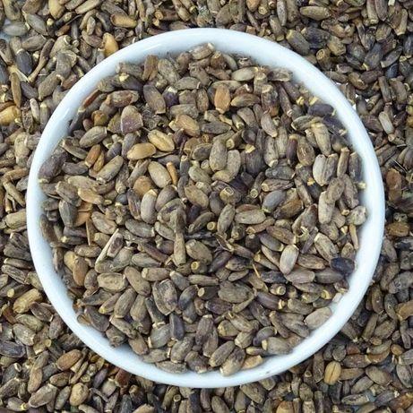 Ceai Armurariu semințe