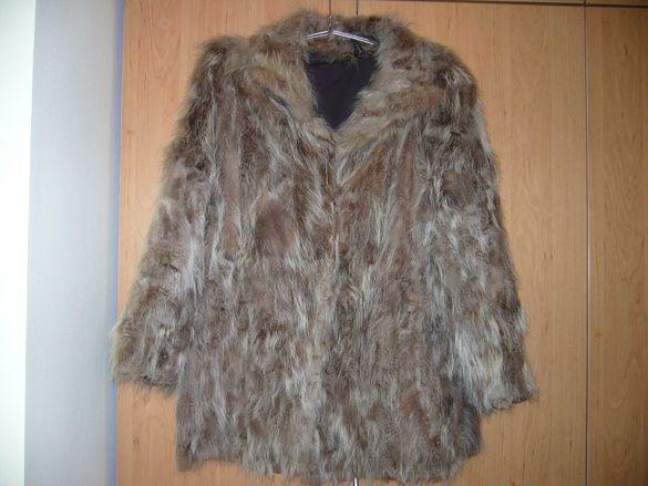 Кожено палто от енот